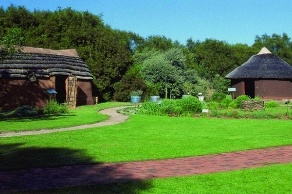 Free State National Botanical Garden in Bloemfontein